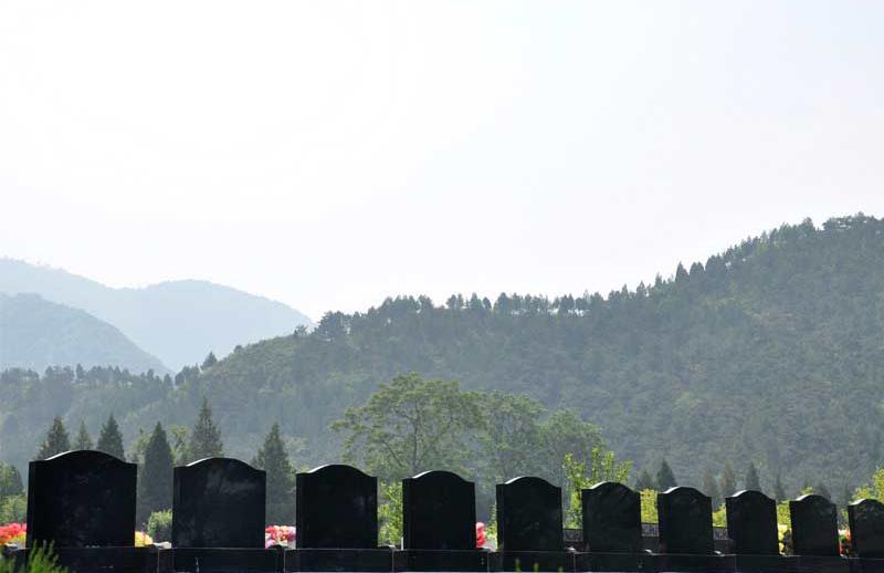 德陵公墓-墓区景观