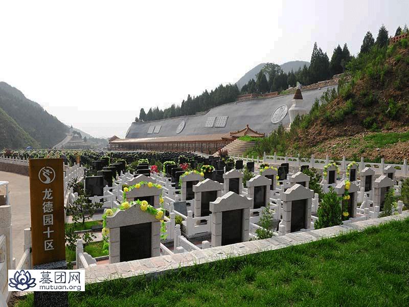 盘龙台公墓-墓区景观